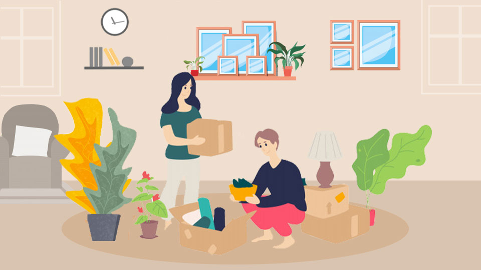 House Plant Packing Moving tips