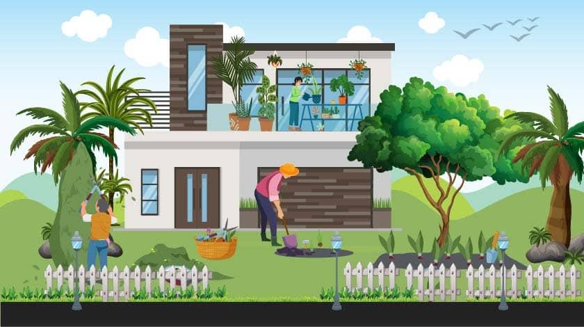 Best Home Gardening Tips for Planning, Setup & Maintenance