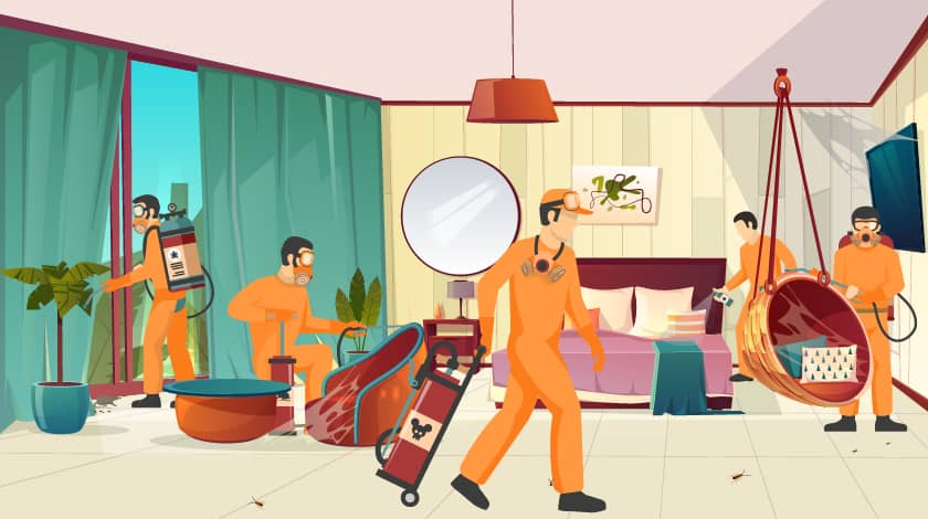 Cheap and Best Pest Control Services in Gurgaon