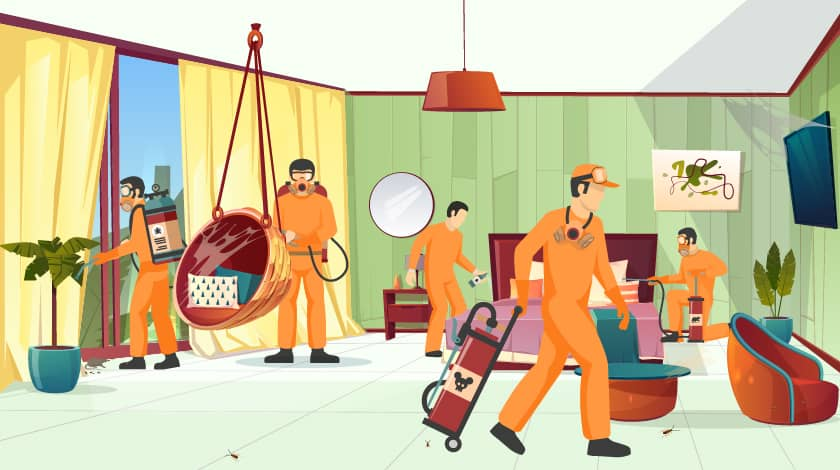Cheap and Best Pest Control Services in Hyderabad