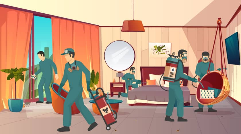 Cheap and Best Pest Control Services in Pune