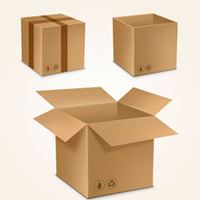 Organized Packing Unpacking Services for Local Shifting in Rohini Delhi