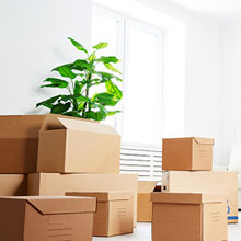 Protective Packing and Moving Services from Beeramguda Hyderabad
