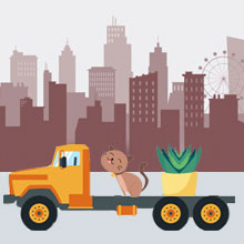 Safe Pet and Plant Moving Services in Bellandur