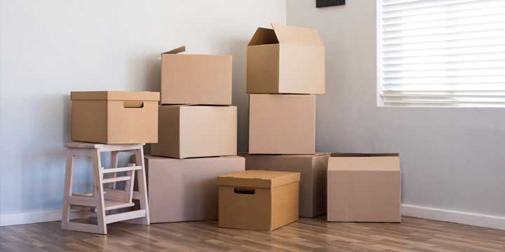 Expertise and Functioned for Domestic Relocation in Jaipur