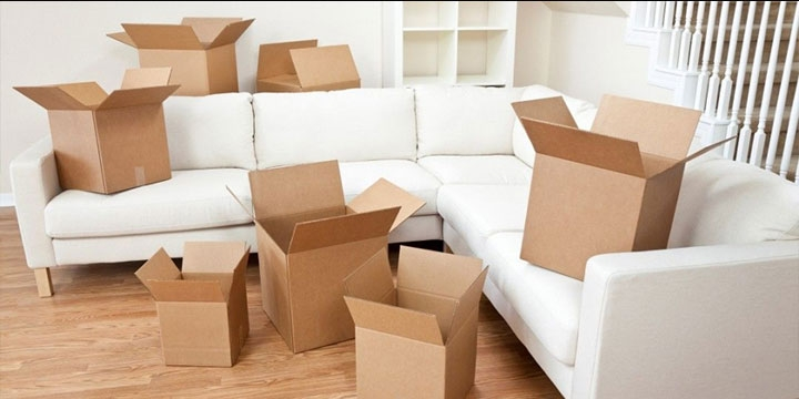 Hassle-free Moving Services in Hyderabad