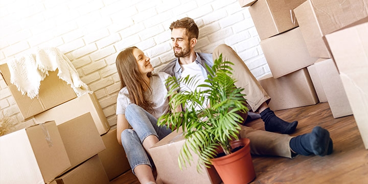 Maintain High Standards Relocation Services