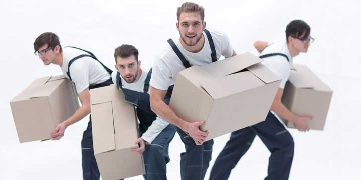 Reliable Packing and Moving Company in Jaipur