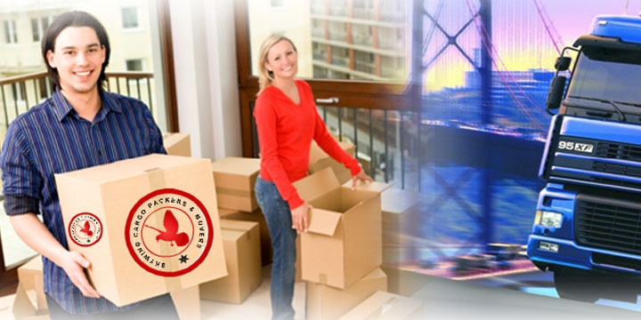 Expert in Packing and Moving Services
